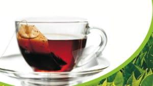 ViPova CBD Tea