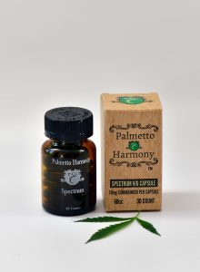 Palmetto Harmony Review