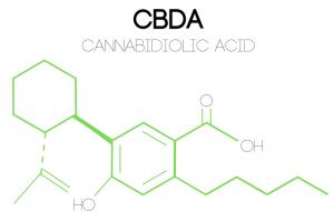 an illustration of CBDA's (cannabidiolic acid) molecular structure