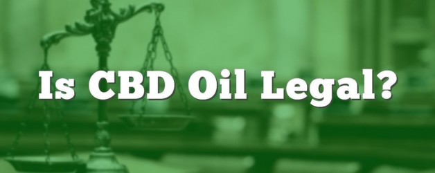Is CBD Oil Legal In My State?
